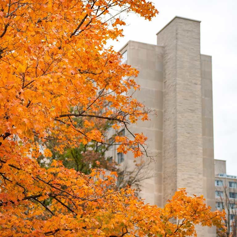 Exterior view of Forest Quadrangle from behind some Fall foliage.